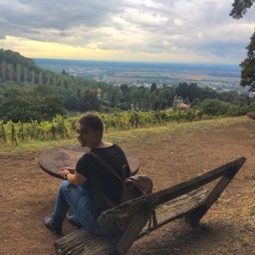 bensheim-hiking-germany-vinyard