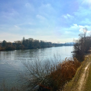 fechenheim-river-main